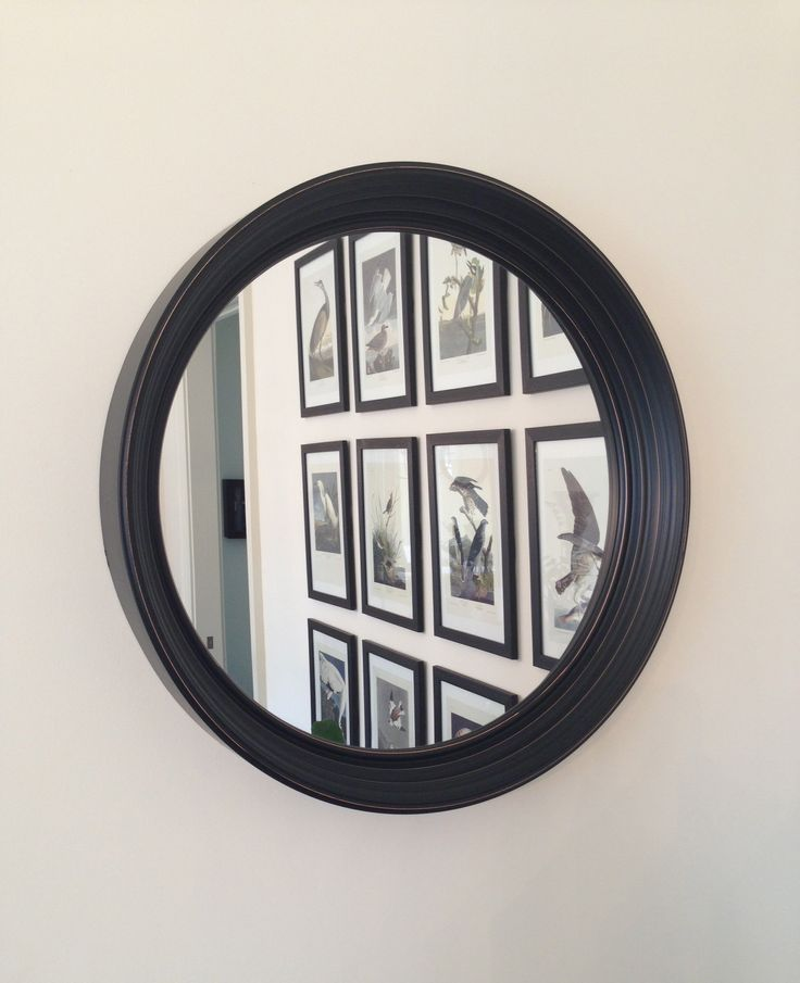 Clients dining room Audubon print grouping reflected ...