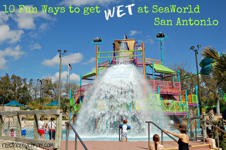 20 Best Images About Seaworld On Pinterest Whale Shirt