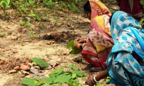 Land rights essential to sustainable development