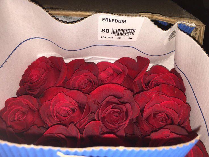Мы предоставляем широкий ассортимент сортовых цветов! ♥   Цена указана за минимальный объём заказа ( 1 шт. 40 см) Роза!  Работаем исключительно по ПРЕДЗАКАЗУ!  В распоряжении такие виды как гвоздики, розы, альстромерии и многое другое. Есть всё - наличие узнавайте по телефону!  Оставь заявку нашему менеджеру.(Klgmks.klient@gmail.com)  https://vk.com/id406285909  т. 333 - 141