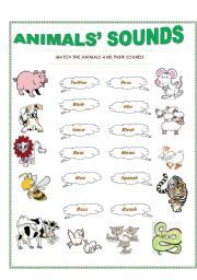17 best images about animals on pinterest vocabulary worksheets science worksheets and the cow. Black Bedroom Furniture Sets. Home Design Ideas