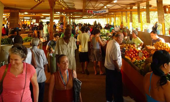 Cuba Organica  Produce from Cuban farms is sold in markets within a day of being harvested.
