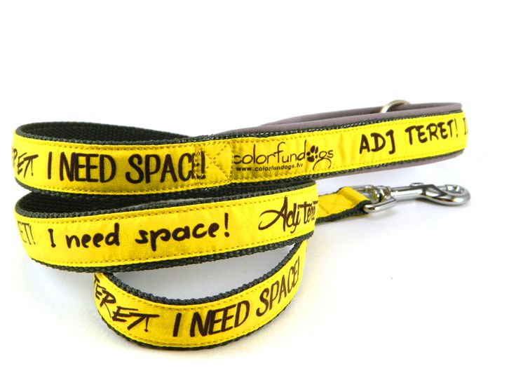 Adj teret póráz/ I need space #colorfundogs #leash