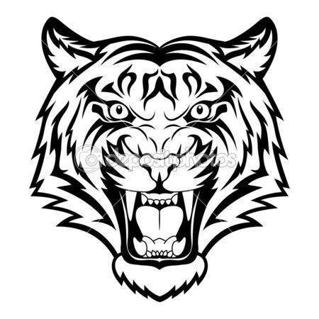 Tiger face — Stock Vector #15658407
