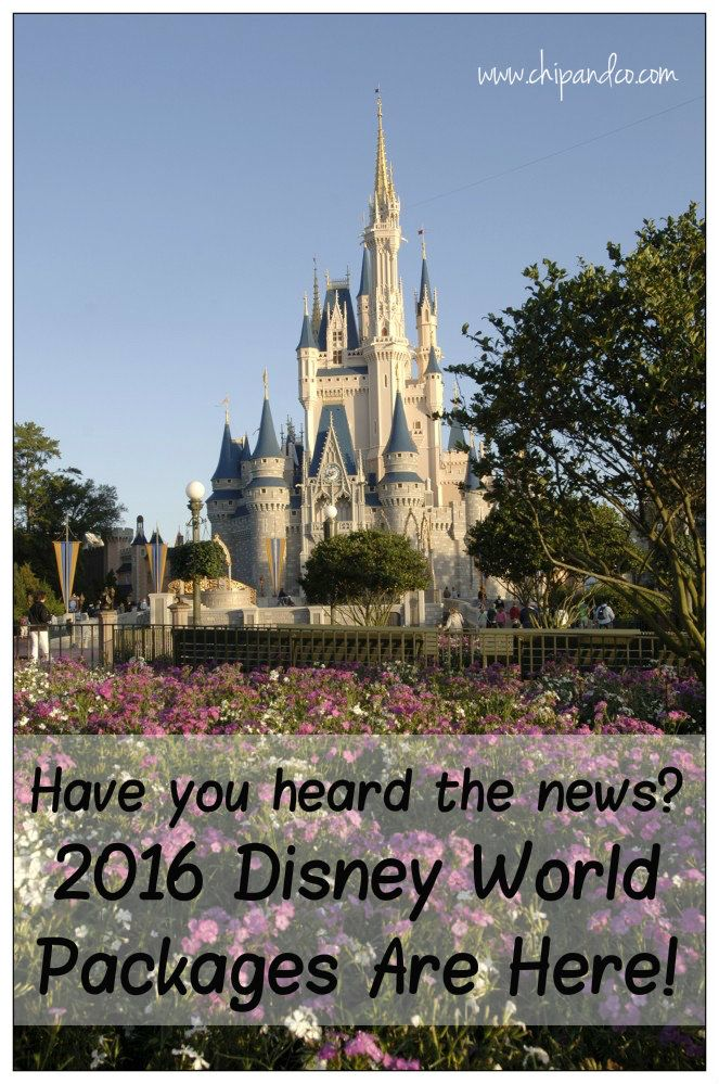 Best Disney Vacation Packages Ideas On Pinterest Disney - Disney vacation packages 2016