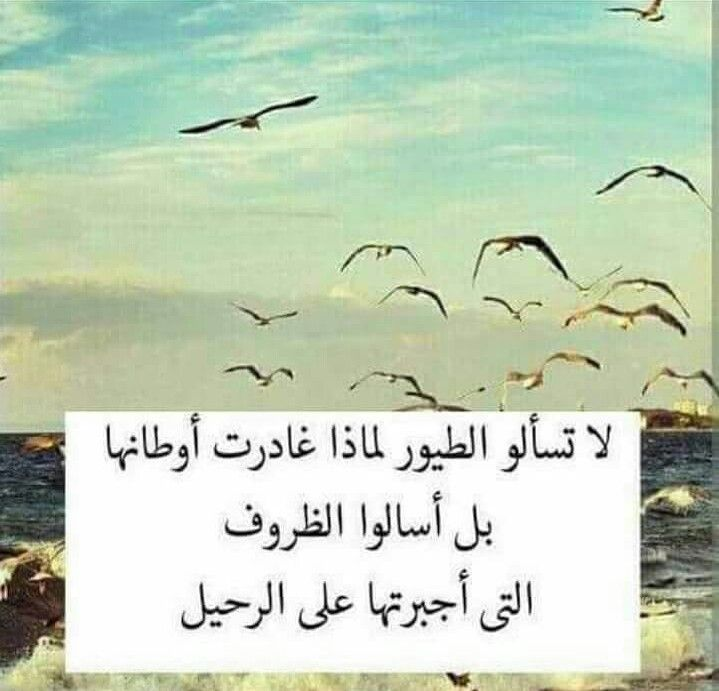 Pin By Nana Jarrar On Words Arabic Quotes Words Sweet Words