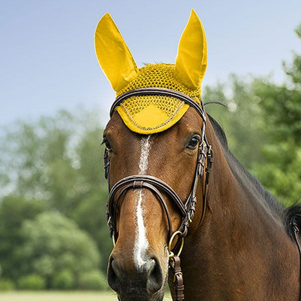"""Cuffietta per cavallo modello """"Polyfil"""" di Equi-thème, In cotone crochet, orecchie in tessuto elasticizzato, giogo triangolare e bordi di cotone intrecciato."""