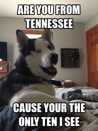 Bad Pick up line dog