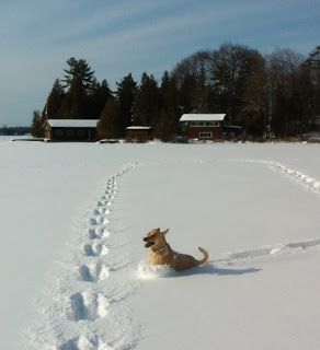 Balsam Lake in the snow