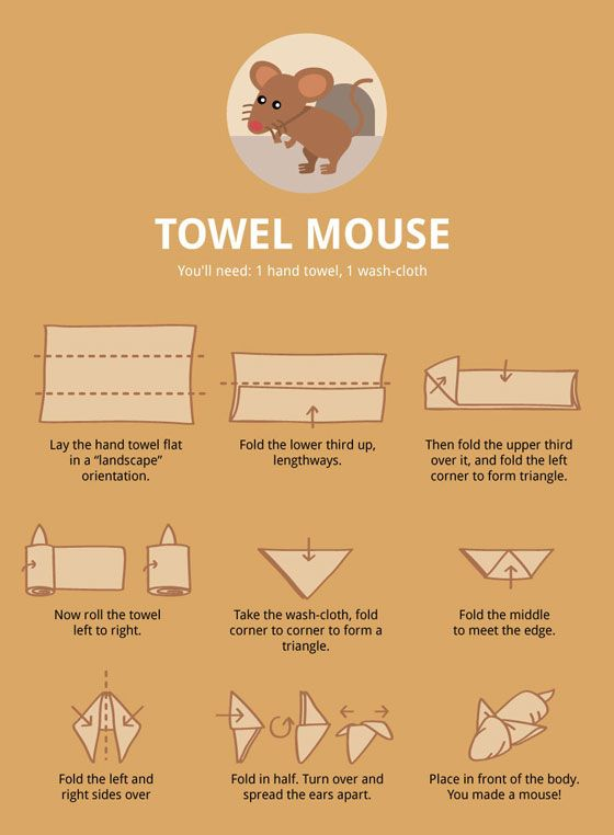 Towel Animal Folding Infographic: Ultimate Guide to Create Your Own Towel Animal