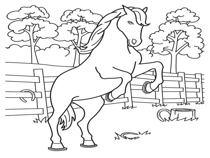 Horse Color Sheets for Children | Activity Shelter