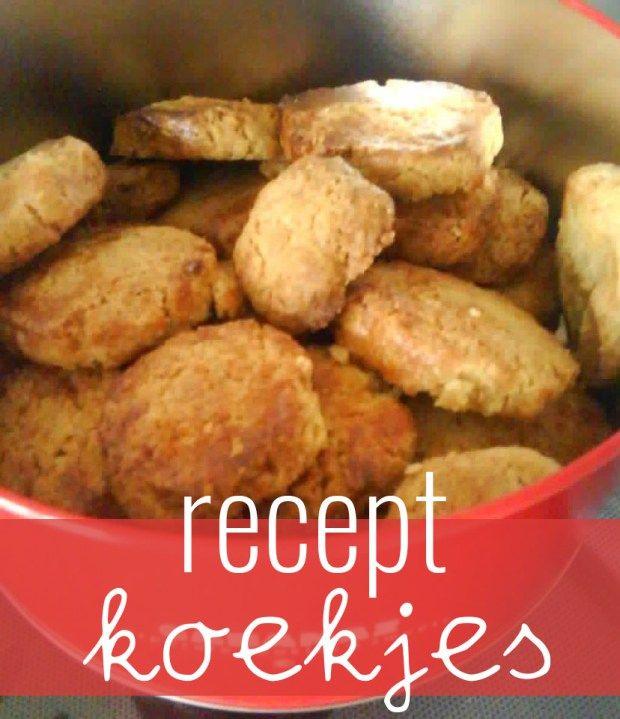 Koekjes bakken met kinderen is hartstikke leuk om te doen. Een perfecte activiteit op een regenachtige (zomer)dag. Deze koekjes zijn om op te vreten!