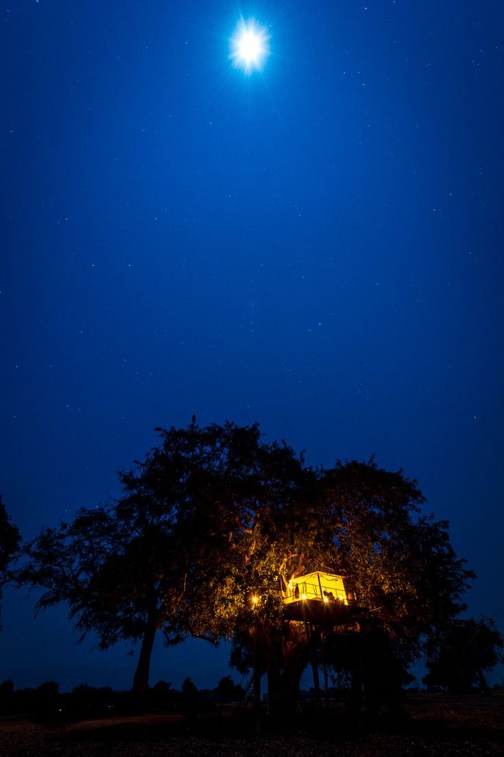 Sleep under the stars at Ruckomechi Camp, Mana Pools - Zimbabwe