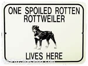 Image detail for -Rottweiler Puppies - Funny Animals