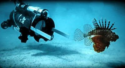 Online Business Operator: Robots, chefs hope to bring invasive lion fish to ...