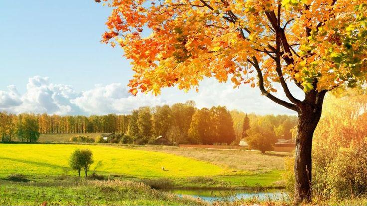 Hd Widescreen Wallpapers 1366 768 Free Download Hd Desktop Wallpapers 1080p Scenery Wallpaper Beautiful Backgrounds Fall Wallpaper