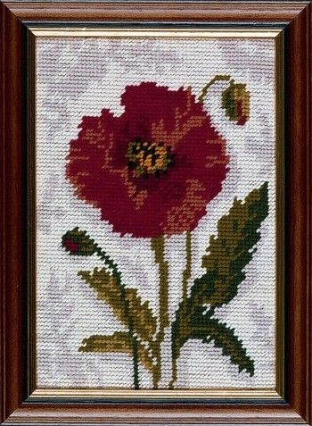 Poppy - Needlepoint Kit