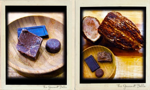 Selection of milk chocolates and the cocoa bean shell at A Gourmet Chocolate Tasting with The Gourmet Belle in Brisbane.