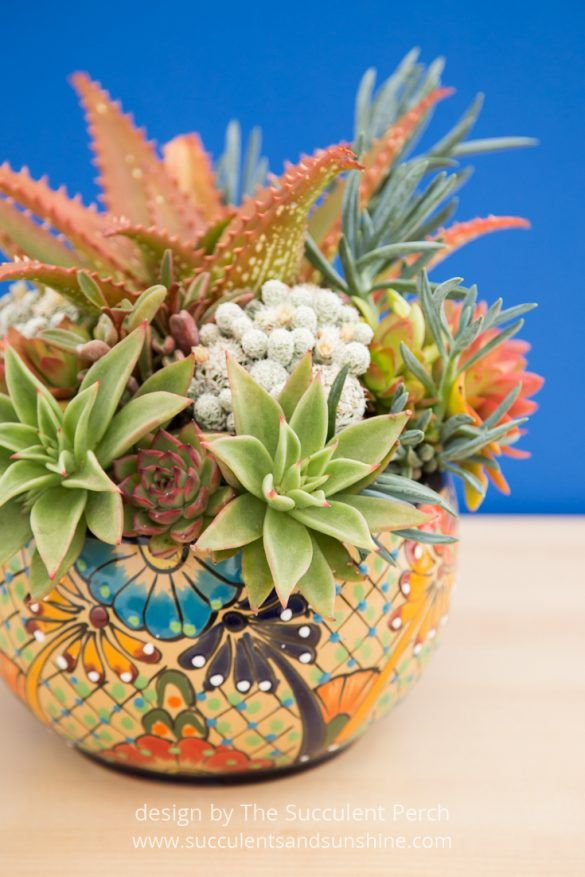 This arrangement is stunning and the post about choosing pottery is so helpful!