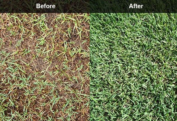 Check out the before and after shot of using core aeration! Core aeration opens up the root systems to absorb the necessary nutrients (nitrogen CO2 etc.) eases soil compaction and as a bonus mulching the plugs act as a top dressing!  #Winnipeg #Gellers #PropertyService #CoreAeration #SpringCleanUp #Landscape #Yard #Lawn