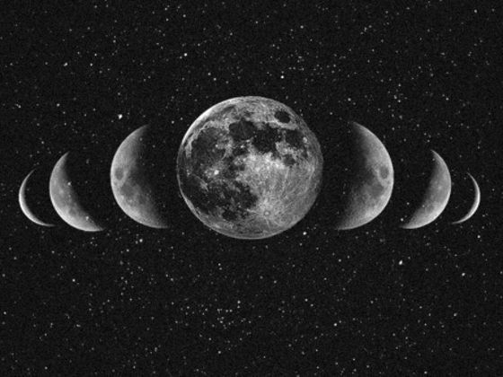 What Phase Of The Moon Are You? I'm a half moon -  Strong willed and idealistic also have no problem with asking others to help you obtain your goals or dreams and you tend to question everything