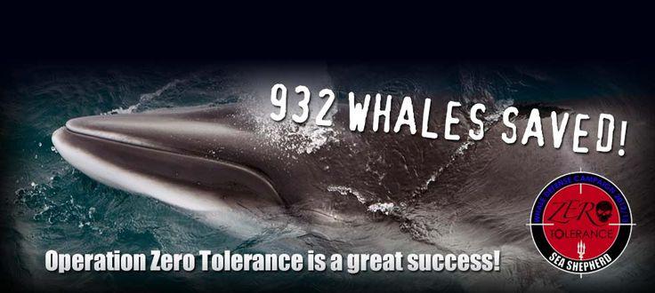 Sea Shepherd.