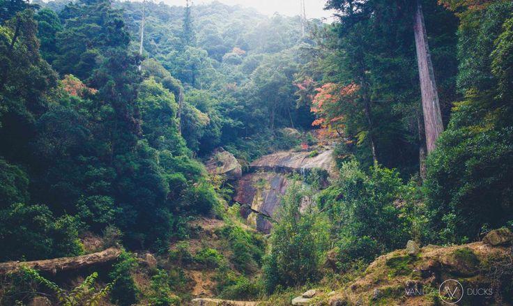 Randonnée à Miyajima, Japon // Trek in Miyajima, Japan