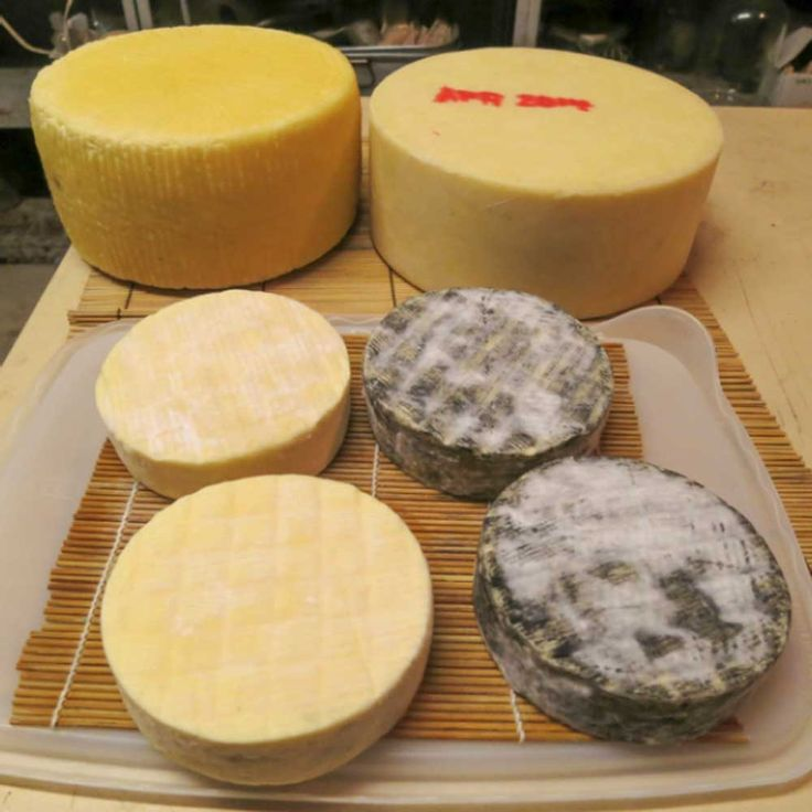 Your Next Big Step in Cheese Making Oct 22-23, 2016