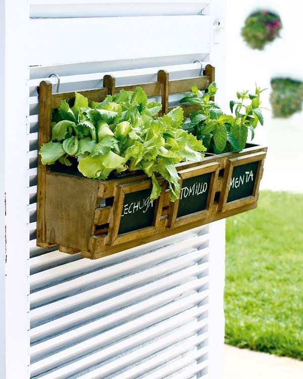 Jardim de ervas ... achando um obturador repurposado receberá alguns ganchos s e pequenos baldes de alvo para segurar meu jardim de ervas pela janela, mas contra a parede