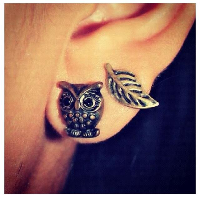 cute Owl ♥