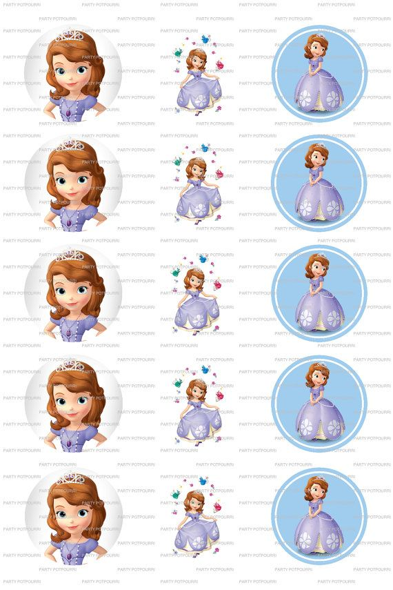INSTANT DOWNLOAD  Princess Sofia Collage  4x6 by PartyPotpourri, $1.50