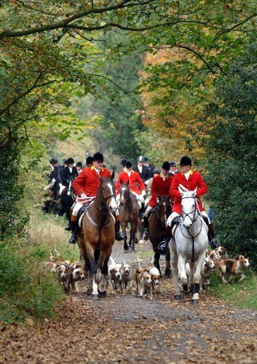 I will go fox hunting next time I go to Ireland