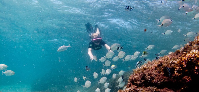 Snorkelling at Thonga