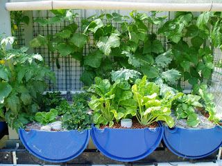 Attirant 114 Best Gardening {aquaponics} Images On Pinterest | Aquaponics System,  Aquaponics And Hydroponics System