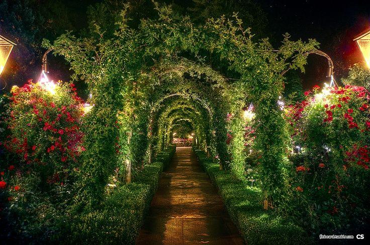 Victorian Mansion Garden At Night Butchart Gardens At