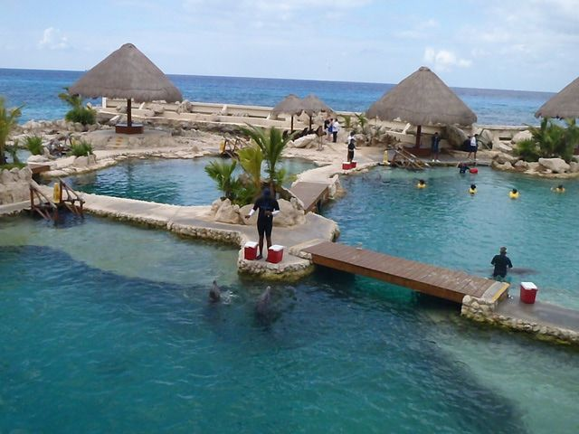 Picture of the Dolphinaris lagoons in Cozumel, which are used to train the dolphins and for dolphin encounters and swims