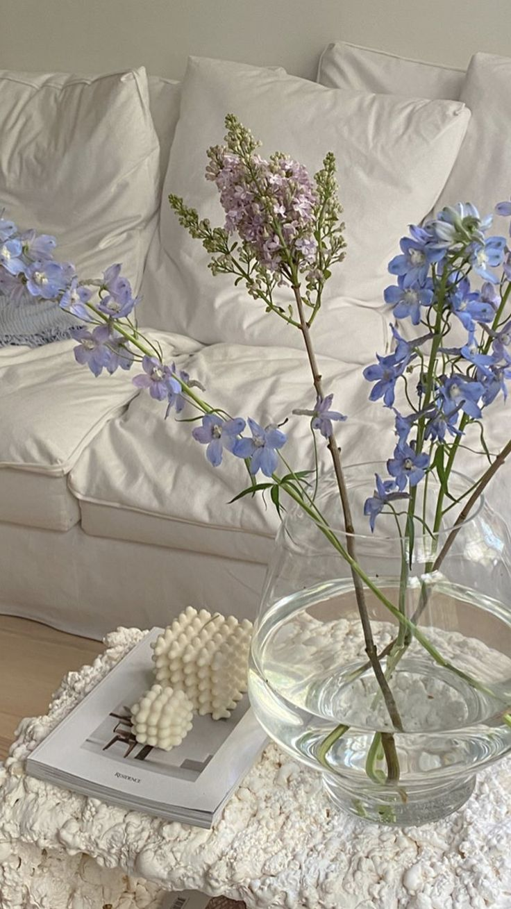 pin by antonia yepes on home sweet home in 2020 on sweet dreams for your home plants decoration precautions and options id=94412