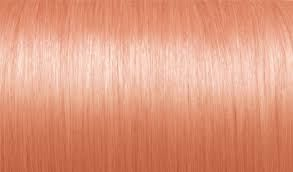 Image result for dusty rose gold hair color