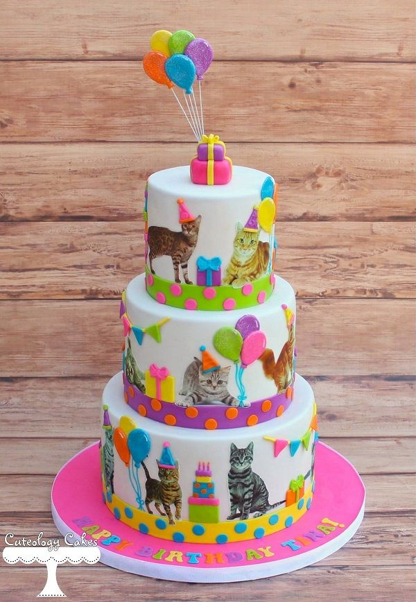 29 best Cat cake images on Pinterest Cat cakes Baking and Cat