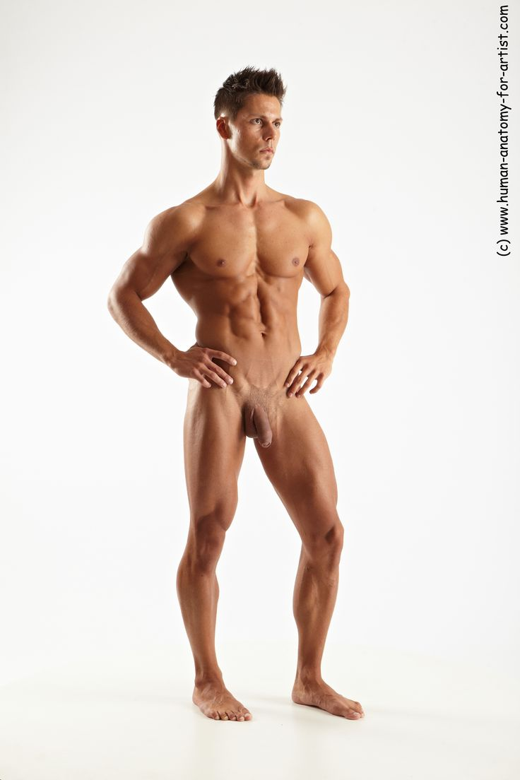 Remarkable, rather Nude male model full body healthy!
