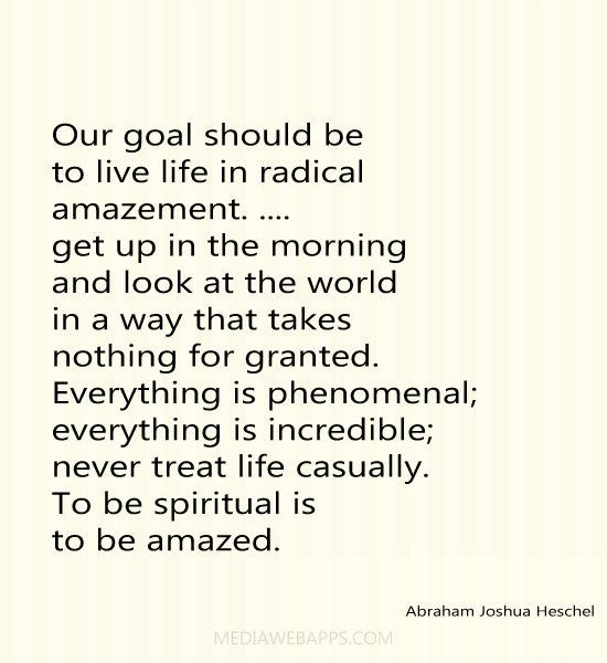Our goal should be to live life in radical amazement.....get up in the morning and look at the world in a way that takes nothing for granted. Everything is phenomenal; everything is incredible; never treat life casually. To be spiritual is to be amazed.