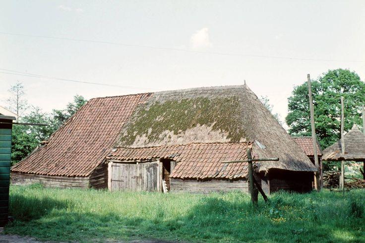 """1962. Schaapskooi bij boerderij """"Het Noordik"""", het huidige """"Erve Noordik""""."""