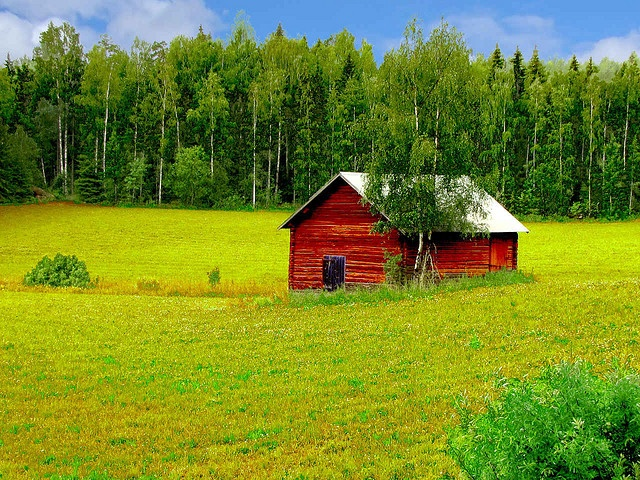 Dalarna - Sweden --- Fäbod - 'Fä' = animal, 'bod' = cabin. In this case an old cabin used when guarding the animals - usually cows and goats - during the summer months.