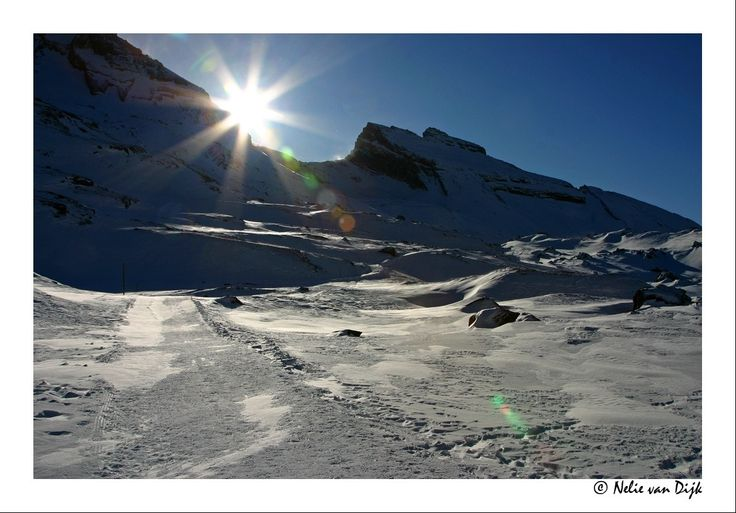 Winterzon. Switserland. Sunrays