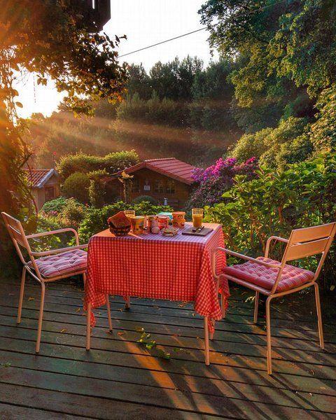 168 besten mein perfekter sommerabend bilder auf pinterest gartenpflanzen balkon und garten. Black Bedroom Furniture Sets. Home Design Ideas