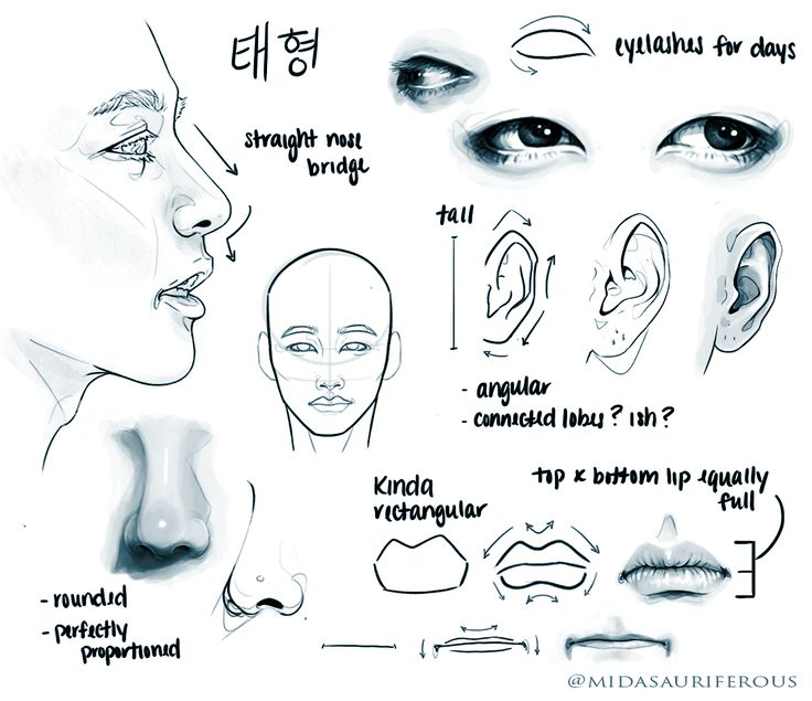 Facial study of Kim Tae-hyung (김태형) also known mononymously as V (뷔) of BTS (방탄소년단).    By midasauriferous on Tumblr.   ️️ hope world bitches (@midasauriferous) on Twitter. ↑↑ Check out the link to see the original reference and the artist's social media account! ↑↑
