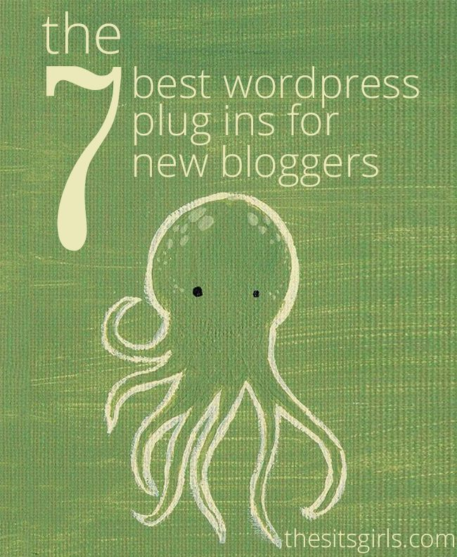 Are you starting a blog on WordPress? Learn the best WordPress plugins to use, so you can get all the benefits of plugins without slowing down your site or leaving you open to hackers. | How To Blog | WordPress Tips | Blogging TIps