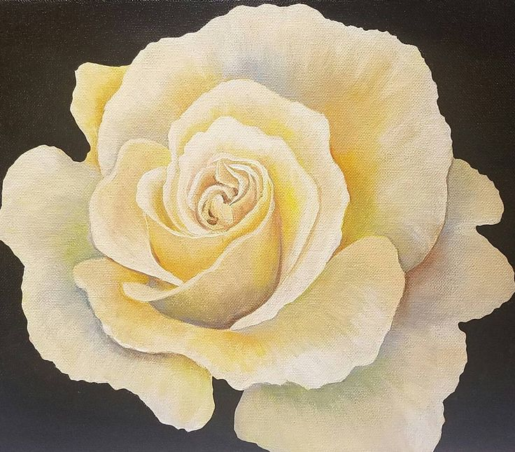 How to Paint a ROSE Acrylic Painting Tutorial on YouTube by Angela Anderson 50k Subscriber Giveaway #angelafineart #rose #acryliconcanvas #free #giveaway