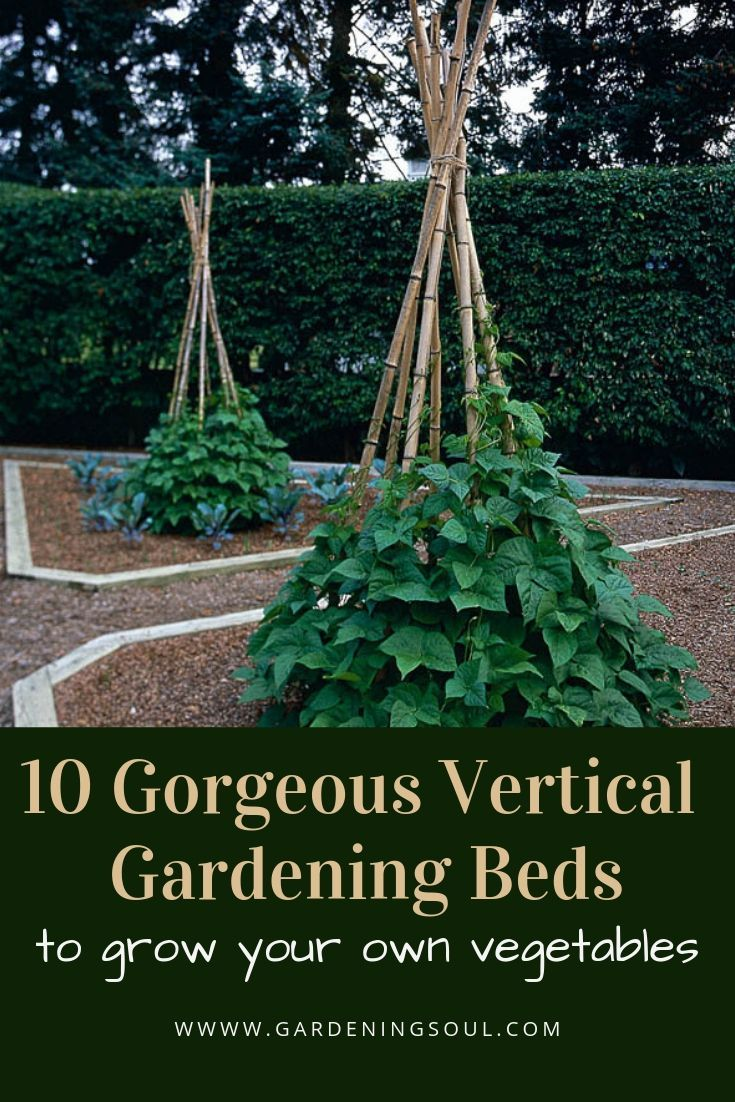10 beautiful vertical garden beds for growing your own vegetables