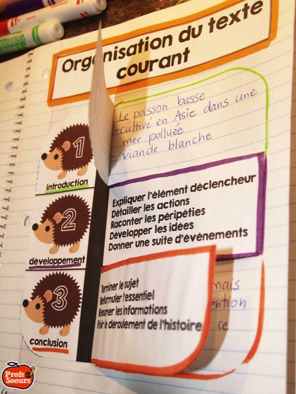 Organisation d'un texte courant // Cahier interactif